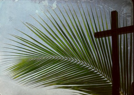 Palm Sunday photo