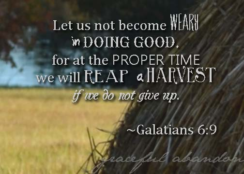 galatians-6-reap-harvest-doing-well-weary